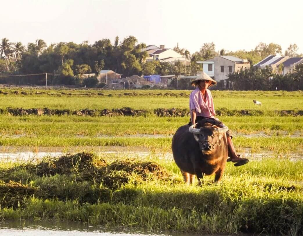HOI AN VIETNAM | 7 Awesome Things to Do