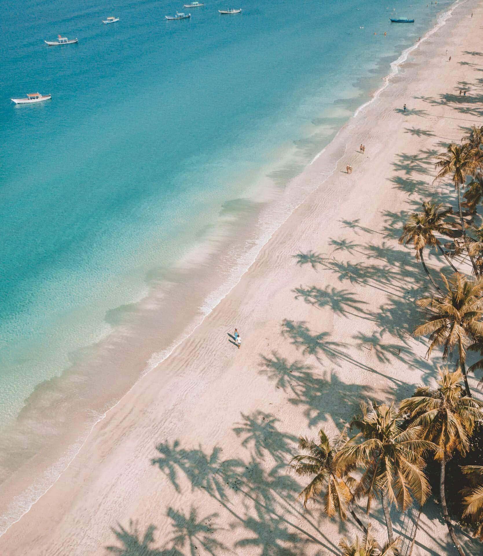 ngapali-most-beautiful-beach-drone-palm