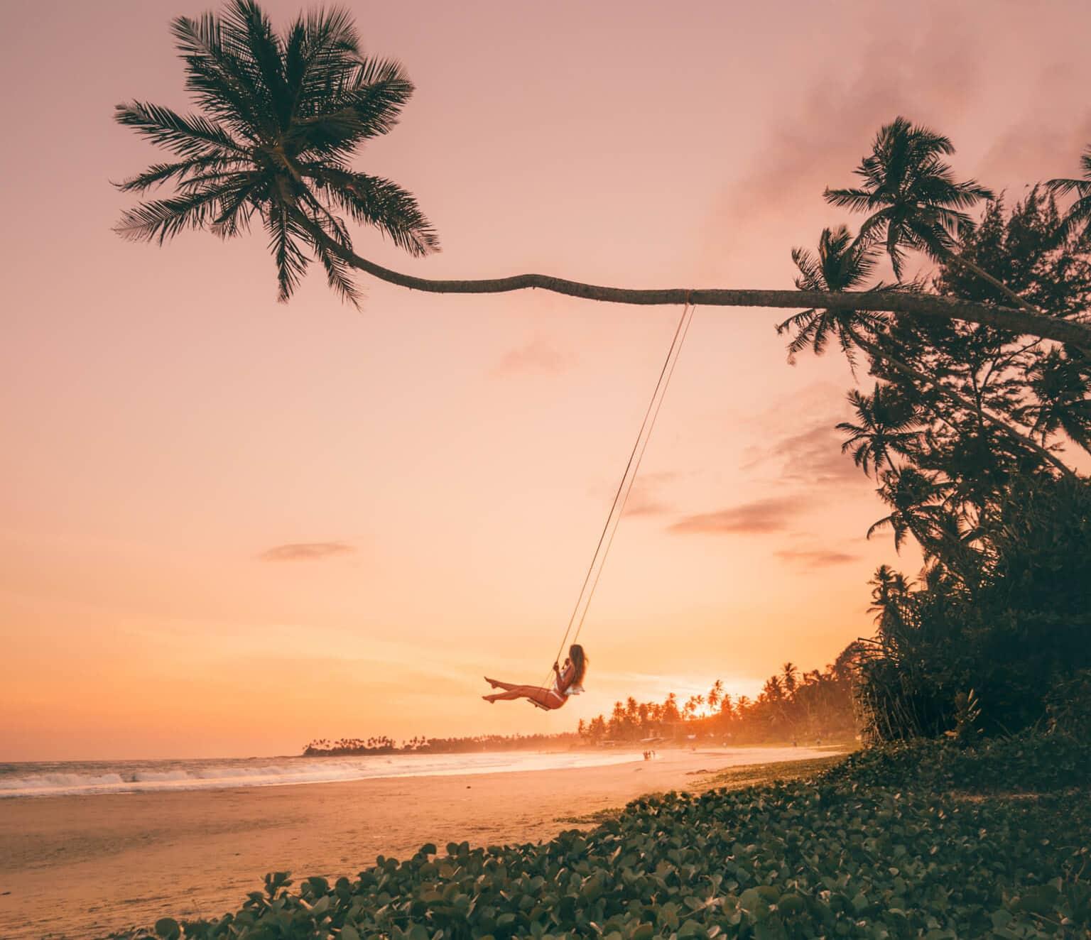 Hiriketiya Dikwella palm swing header