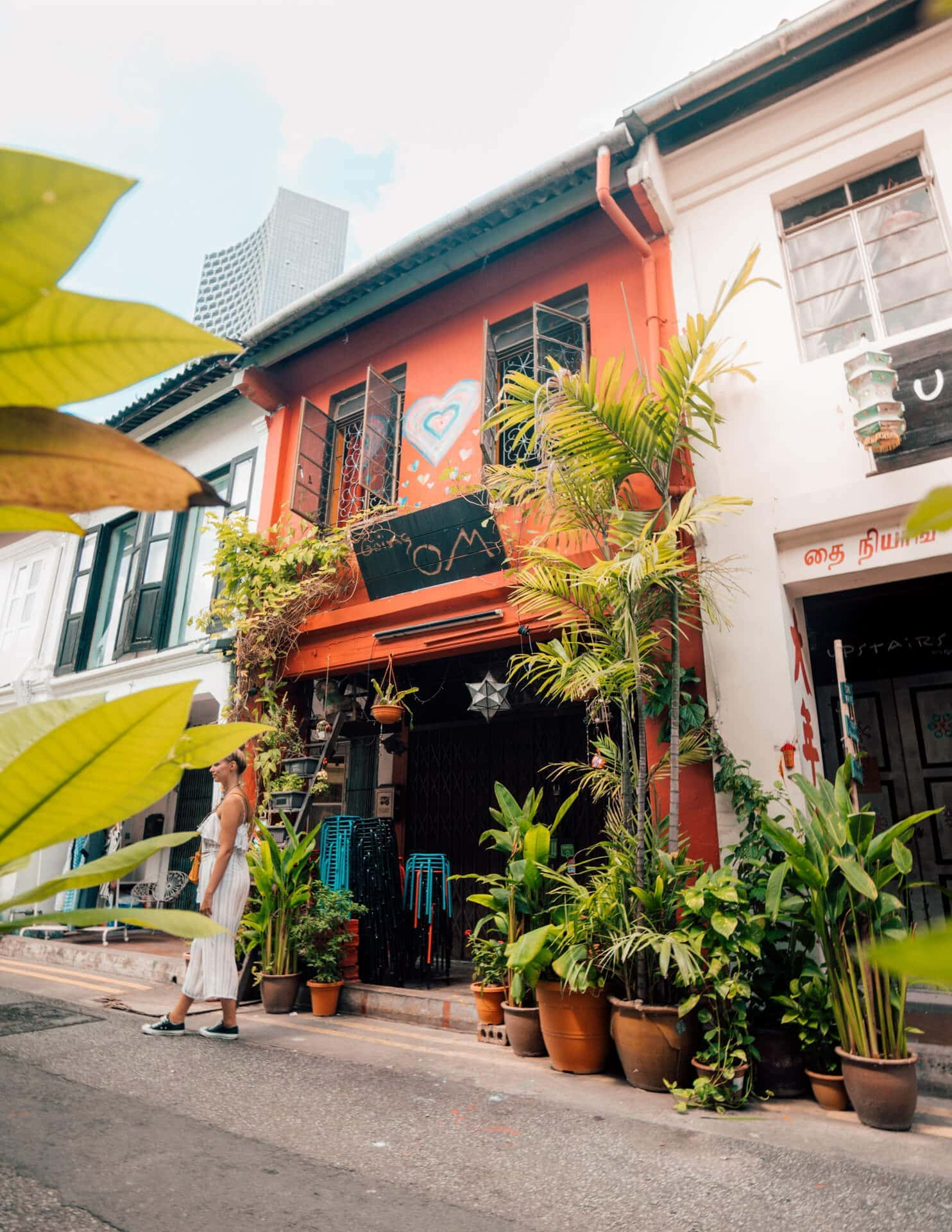 things to do singapore haji lane plants