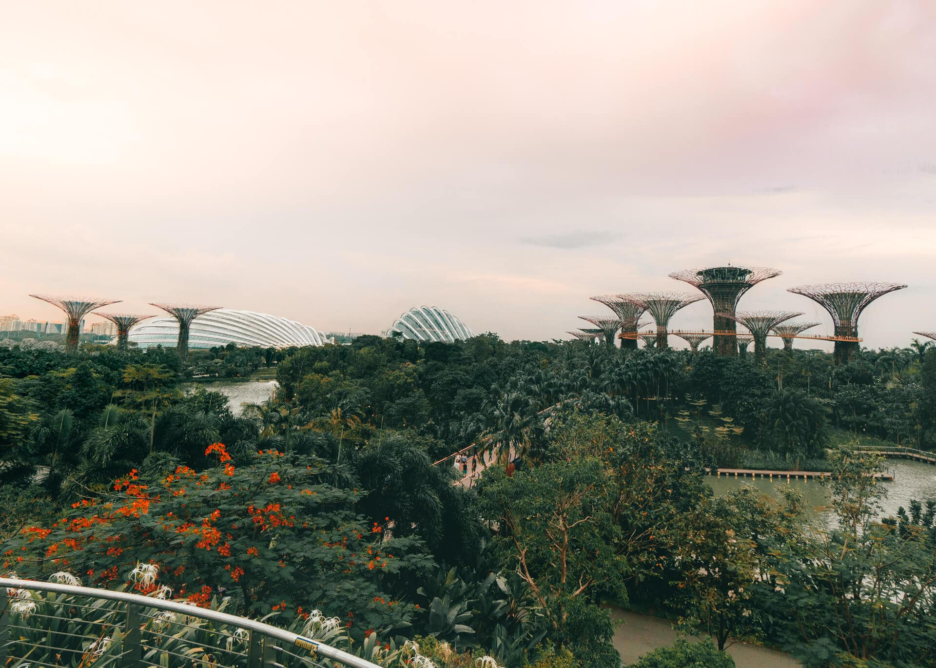 things to do singapore gardens by the bay