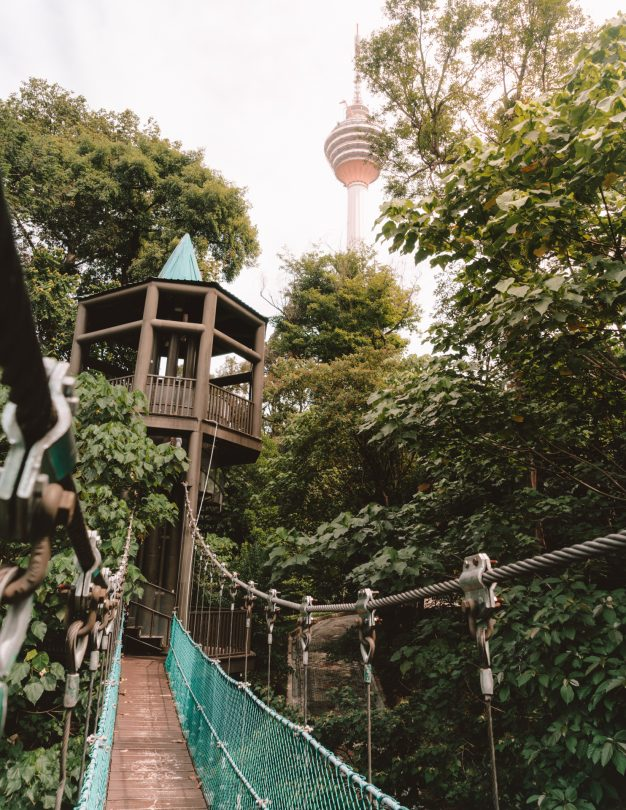 things to do kuala lumpur eco forest view