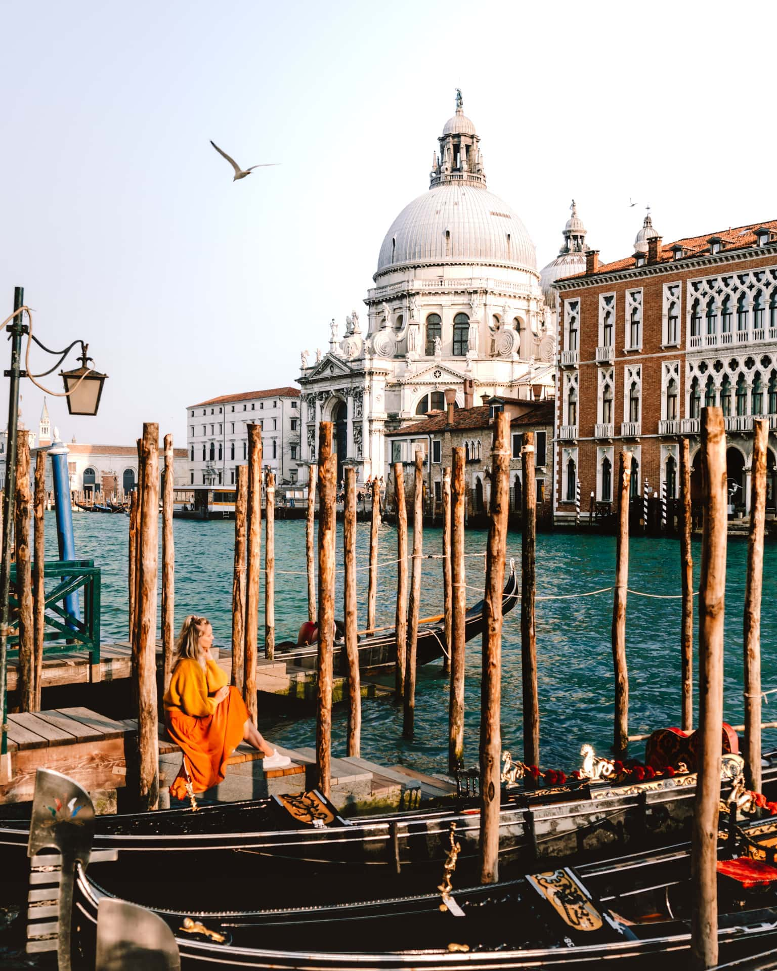 things to do venice Basilisk view